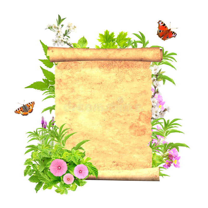 Download Message of nature stock illustration. Illustration of isolated - 29727697