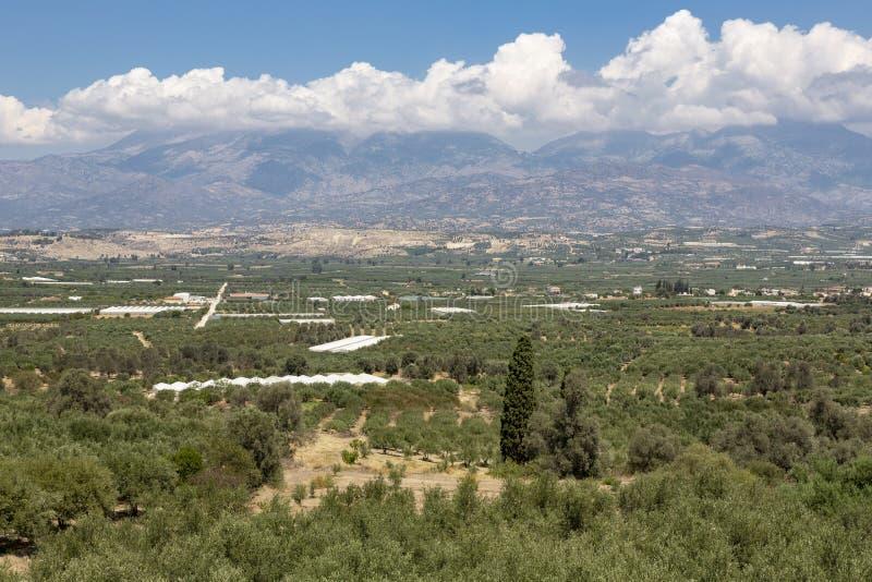 Messara równiny w południe Crete, Grecja zdjęcie stock