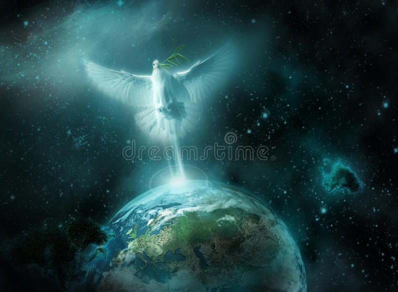 Messenger of peace royalty free stock images