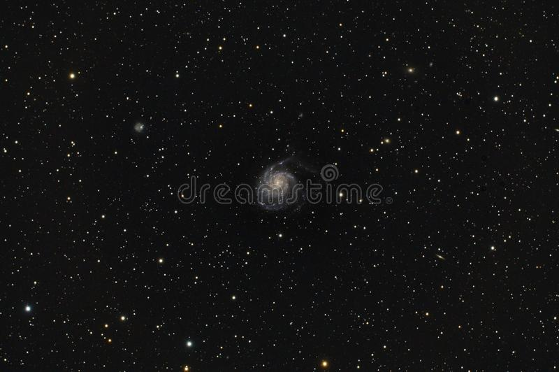 Messier 101 Pinwheel Galaxy in Ursa Major stock photography