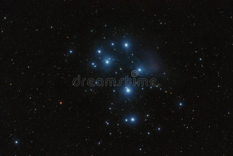 Messier 45 Pleyades Subaru mgławica obraz stock