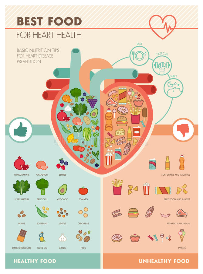 Mest bra mat för hjärta vektor illustrationer