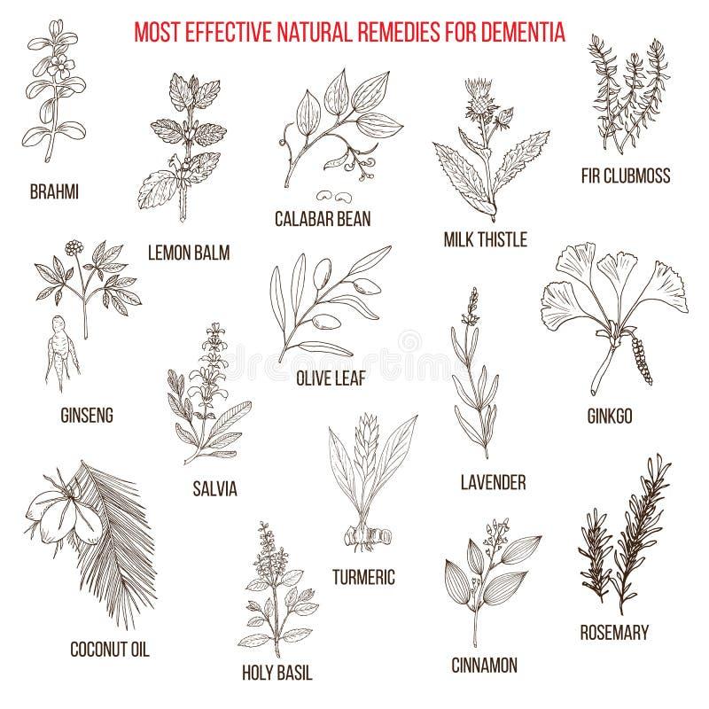 Mest bra växt- boter för demens stock illustrationer