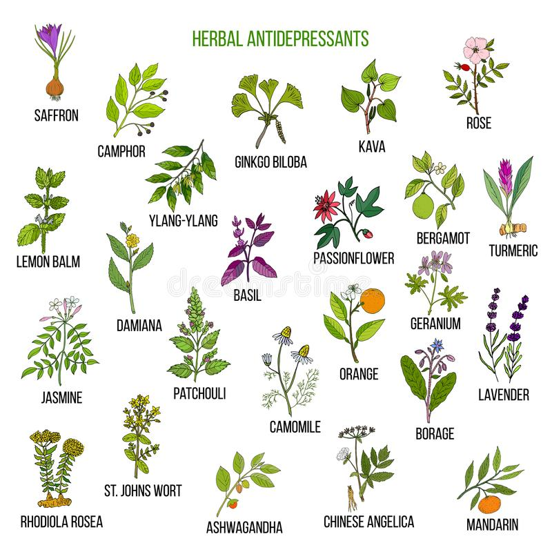 Mest bra växt- lyckodroger stock illustrationer