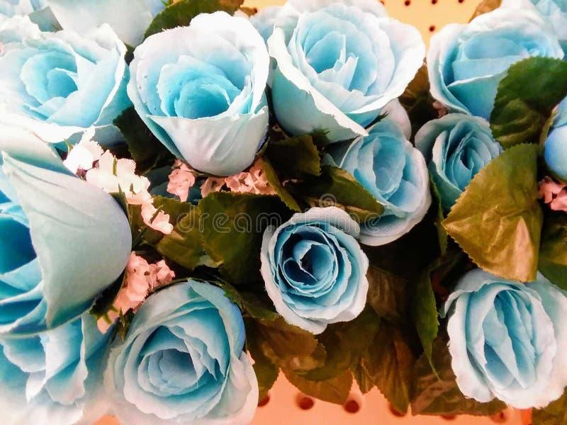 Mest nära blåaktiga rosor royaltyfria bilder