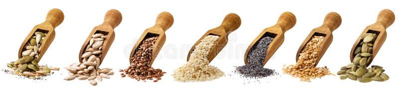 Mestolo con i semi della zucca, del lino, del sesamo del girasole e del papavero isolato su un fondo bianco fotografia stock