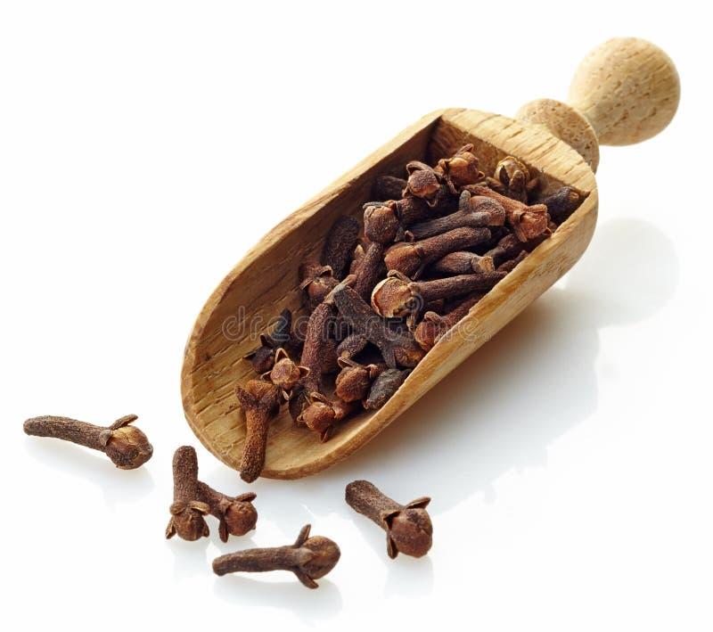 Mestolo di legno con i chiodi di garofano fotografia stock libera da diritti
