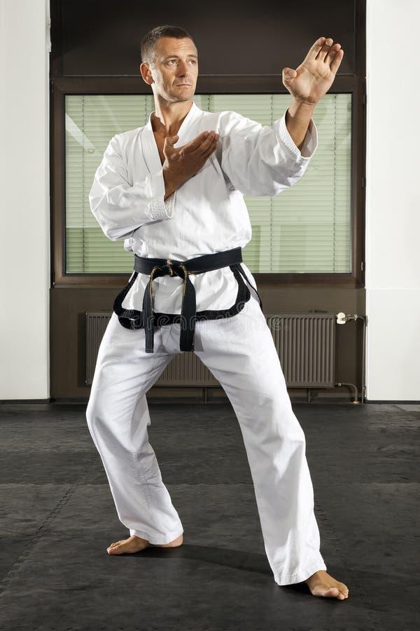 Mestre das artes marciais foto de stock