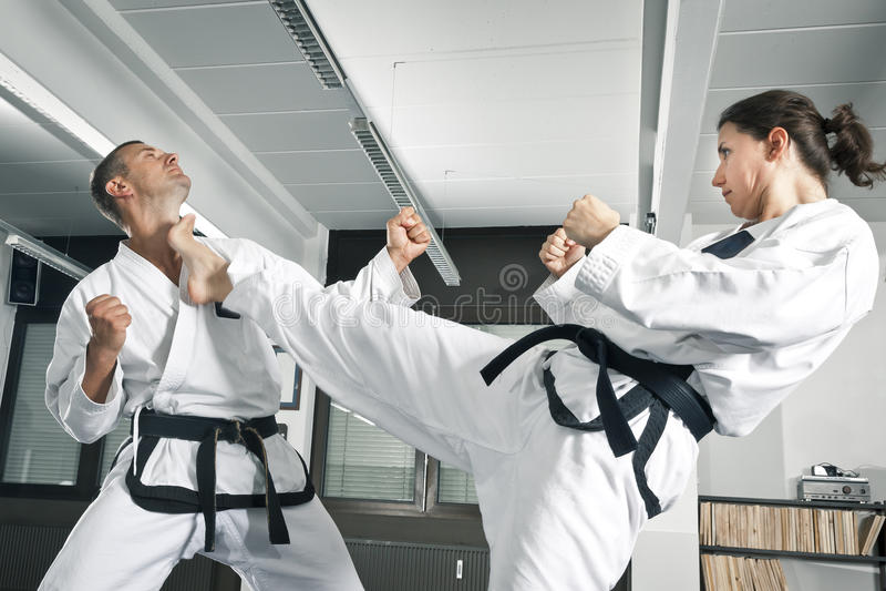 Mestre das artes marciais fotos de stock royalty free