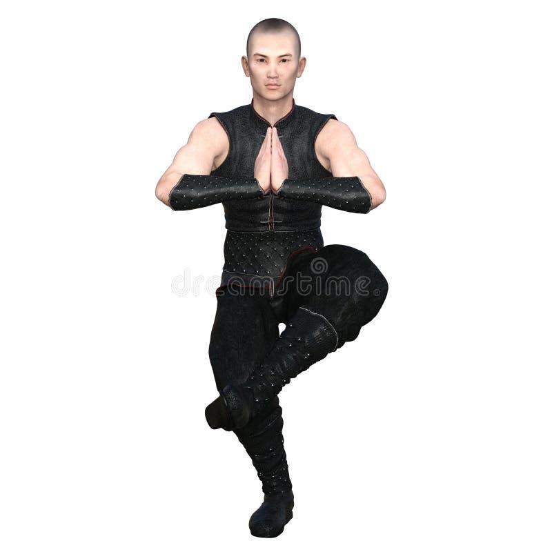 Mestre do kung-fu fotografia de stock