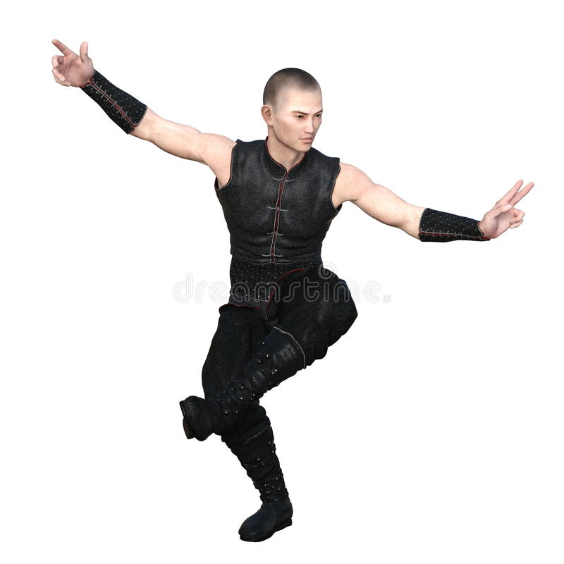 Mestre do kung-fu foto de stock