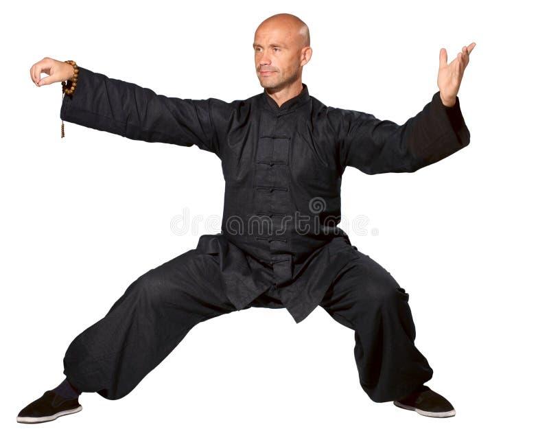 Mestre do TAI-qui imagens de stock