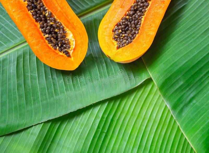 Metà del taglio della frutta tropicale della papaia che pone le foglie verdi della banana, vista superiore Fondo di estate Concet fotografia stock libera da diritti