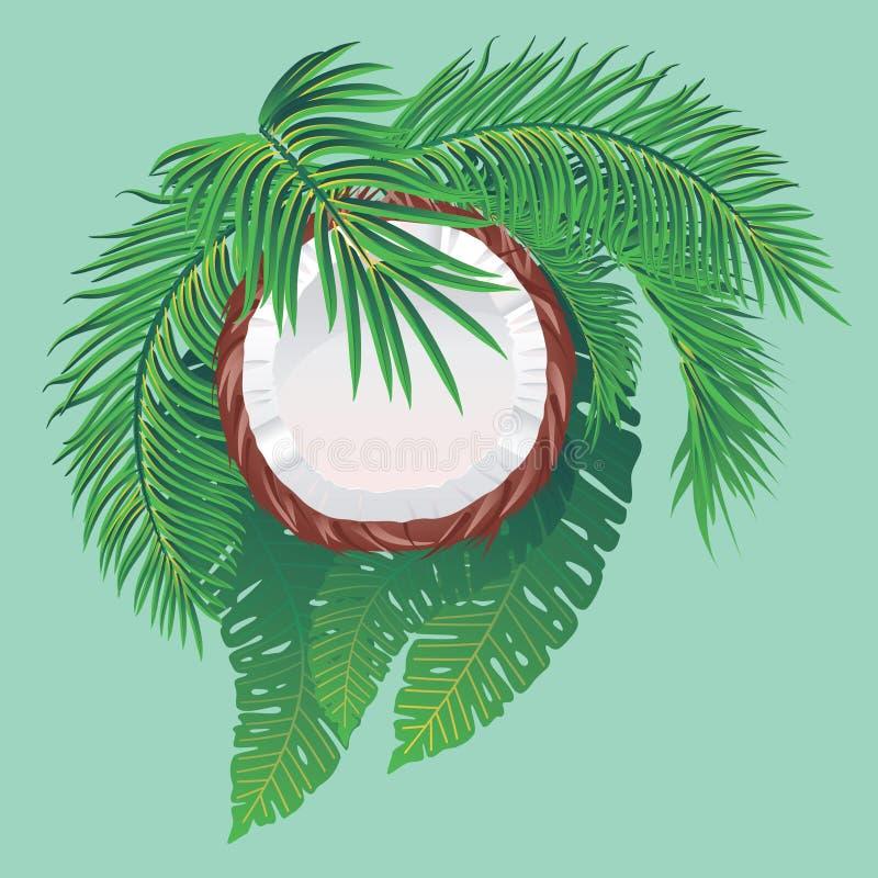 Metà e foglie di palma della noce di cocco illustrazione di stock