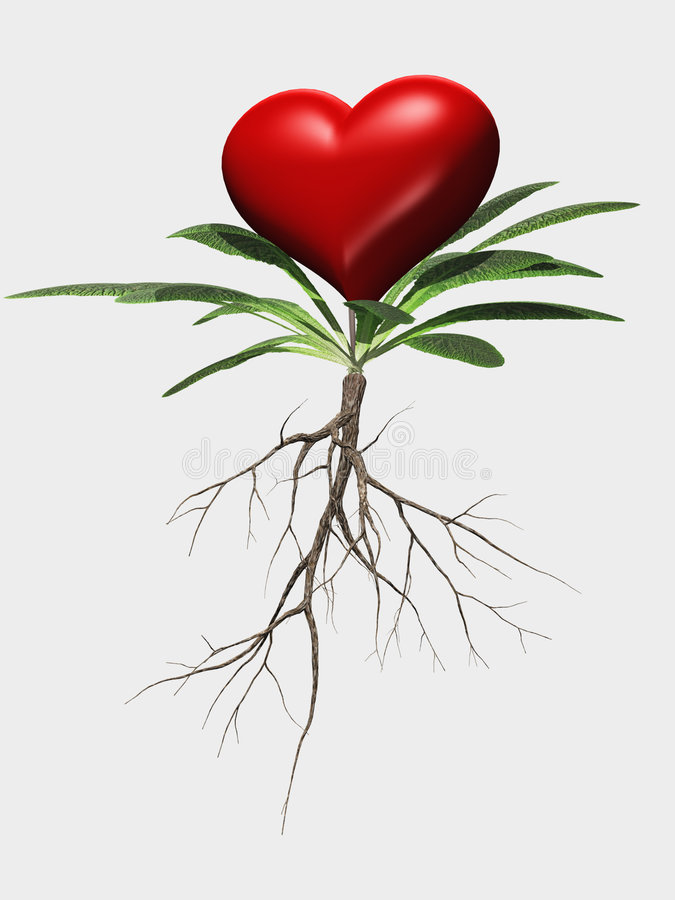 Metáfora da flor do coração isolada ilustração royalty free