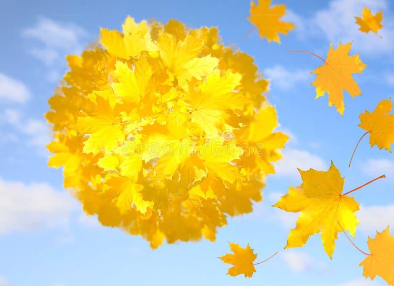 Metáfora del otoño fotos de archivo libres de regalías