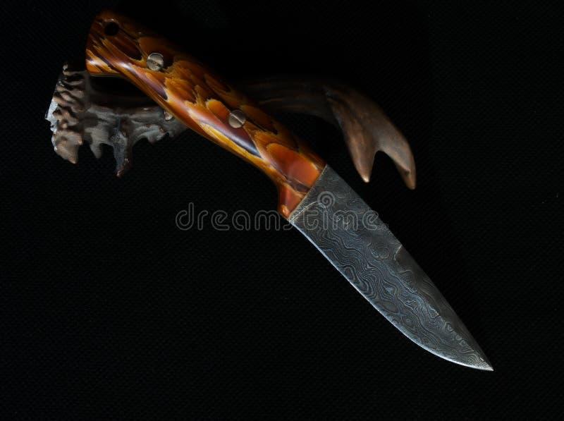 Met de hand gemaakt mes van damaststaal op reebokhoorn stock foto