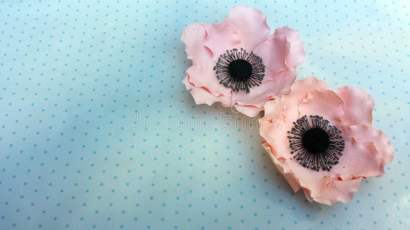 Met de hand gemaakte eetbare Anemoonbloemen royalty-vrije stock foto's
