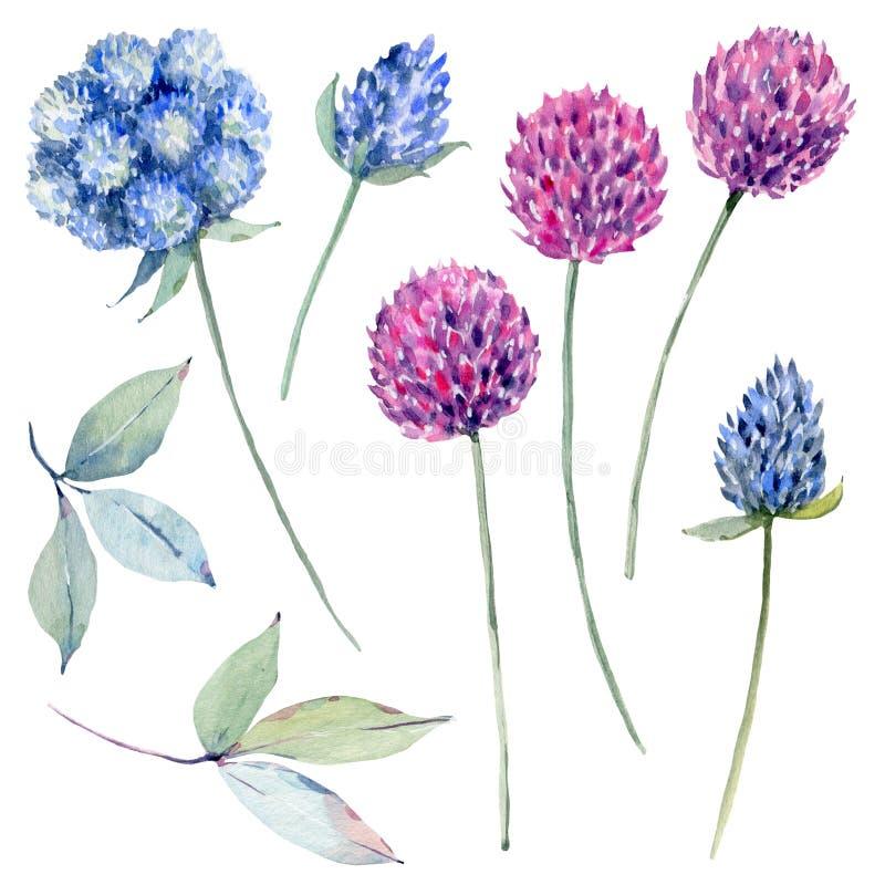 Met de hand geschilderde die waterverfbloemen in uitstekende stijl worden geplaatst vector illustratie