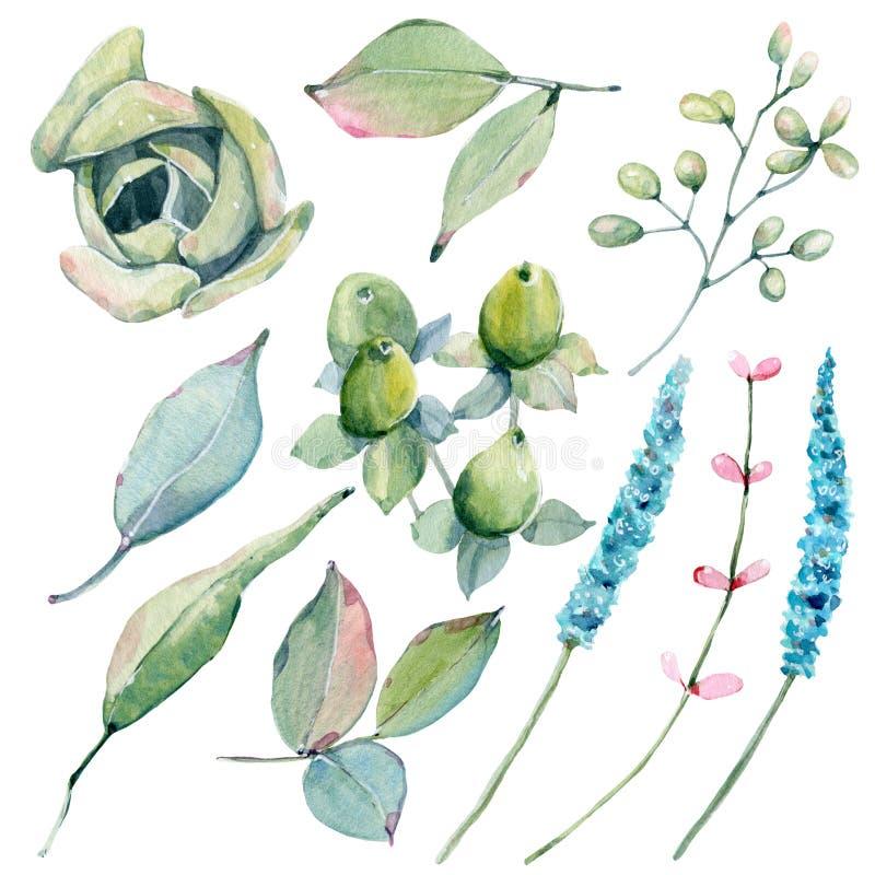 Met de hand geschilderde die waterverfbloemen in uitstekende stijl worden geplaatst royalty-vrije illustratie