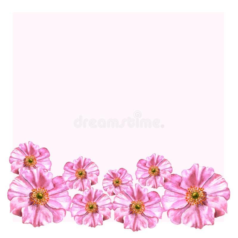 Met de hand geschilderde die waterverfbloemen in uitstekende stijl worden geplaatst De anemonen op roze spatie kunnen voor verjaa royalty-vrije illustratie