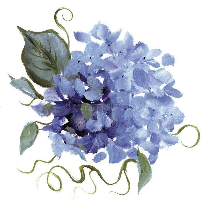 Met de hand geschilderde Hydrangea hortensia royalty-vrije illustratie