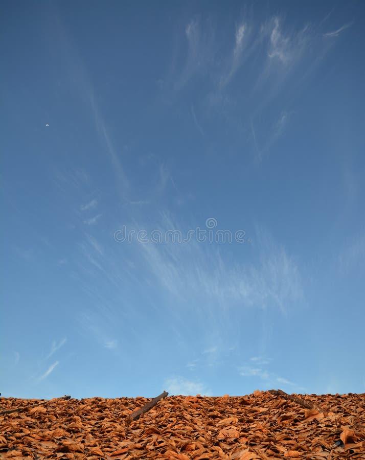 Met stro bedekte Dak en hemel stock afbeeldingen