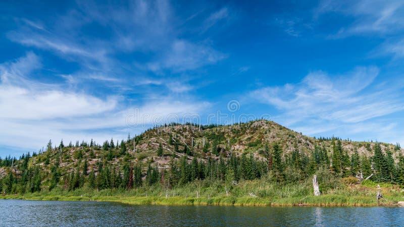 Meta See in Washington State lizenzfreies stockbild