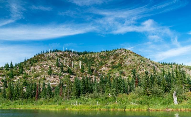 Meta See in Washington State lizenzfreie stockfotografie