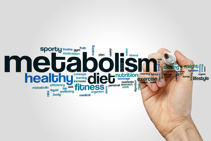 Metabolism word cloud. Concept on grey background stock images