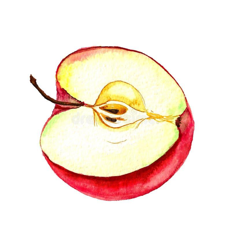 Metade da maçã ilustração royalty free