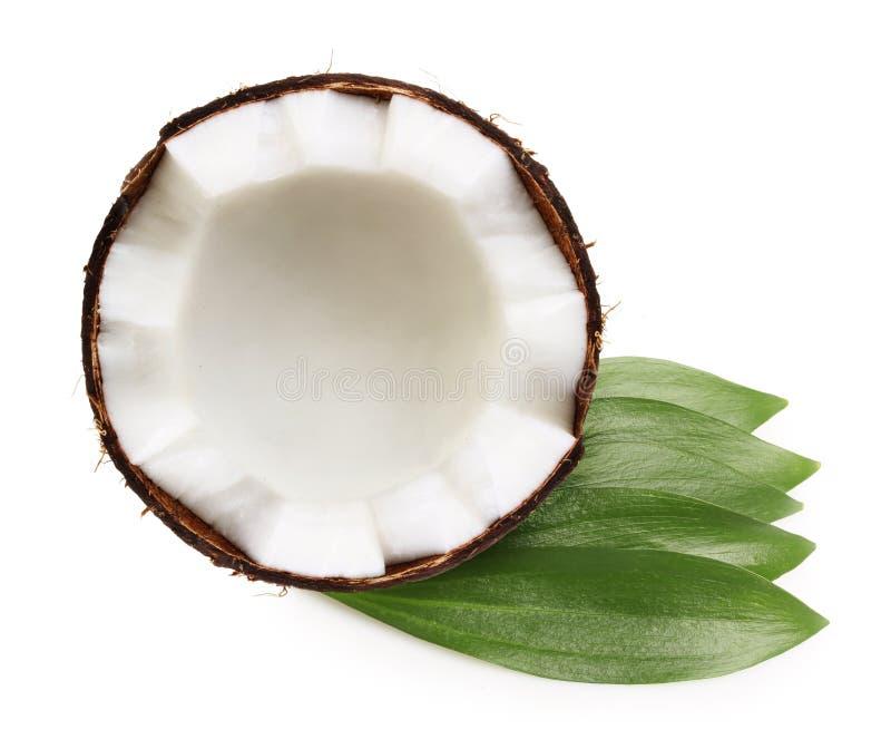 Metade do coco isolada fotografia de stock