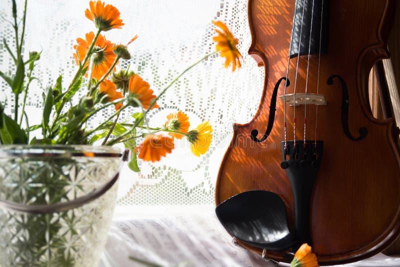 Metade inferior de um violino com partitura e flores a parte dianteira do violino no fundo das janelas foto de stock royalty free