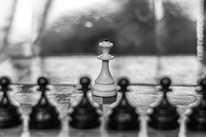 Metafor av unikhet och ensamhet royaltyfri bild