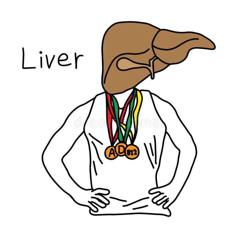 Metaforfunktion av lever till leverlagervitaminer A, D och B12 stock illustrationer