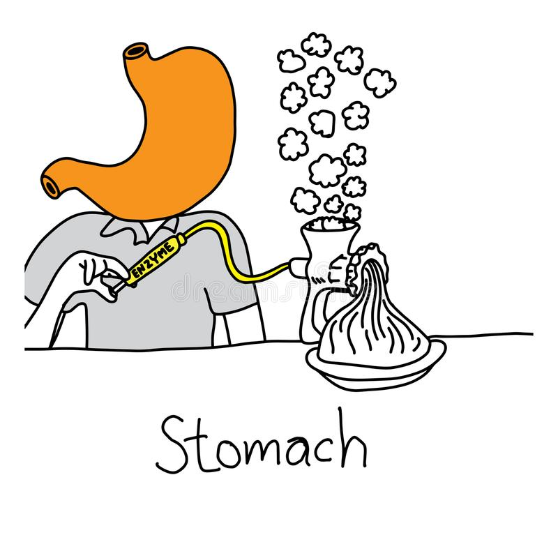 Metaforfunktion av magen som avsöndrar syra och enzym som di stock illustrationer