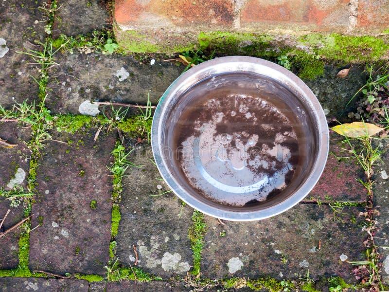 Metal a bacia do cão de água completamente na terra imagem de stock royalty free