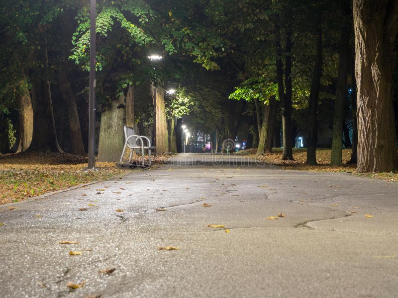Metal bench in park at night. Promenade at night October, leaves, autumn royalty free stock image