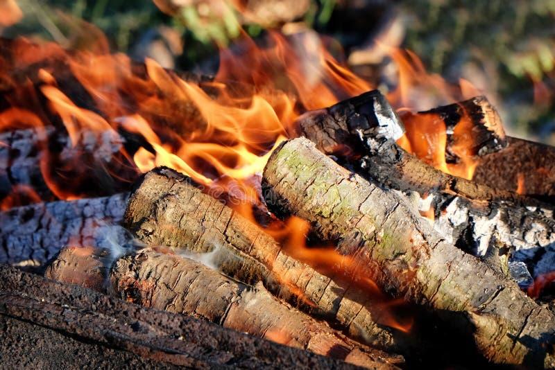 Metal brazier with burning wood outdoors. Closeup stock photos