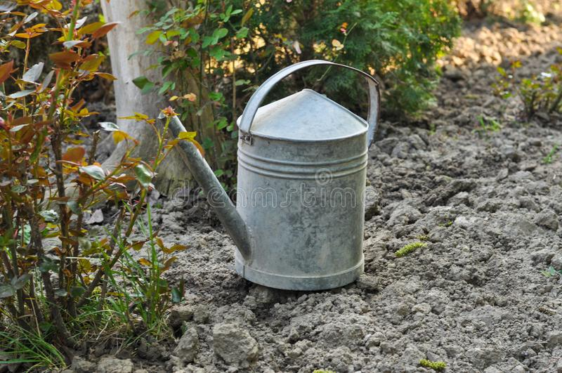 Metal bucket for watering flowers in the garden. Container, white, equipment, handle, tool, metallic, background, object, steel, household, empty, tin, antique stock photo