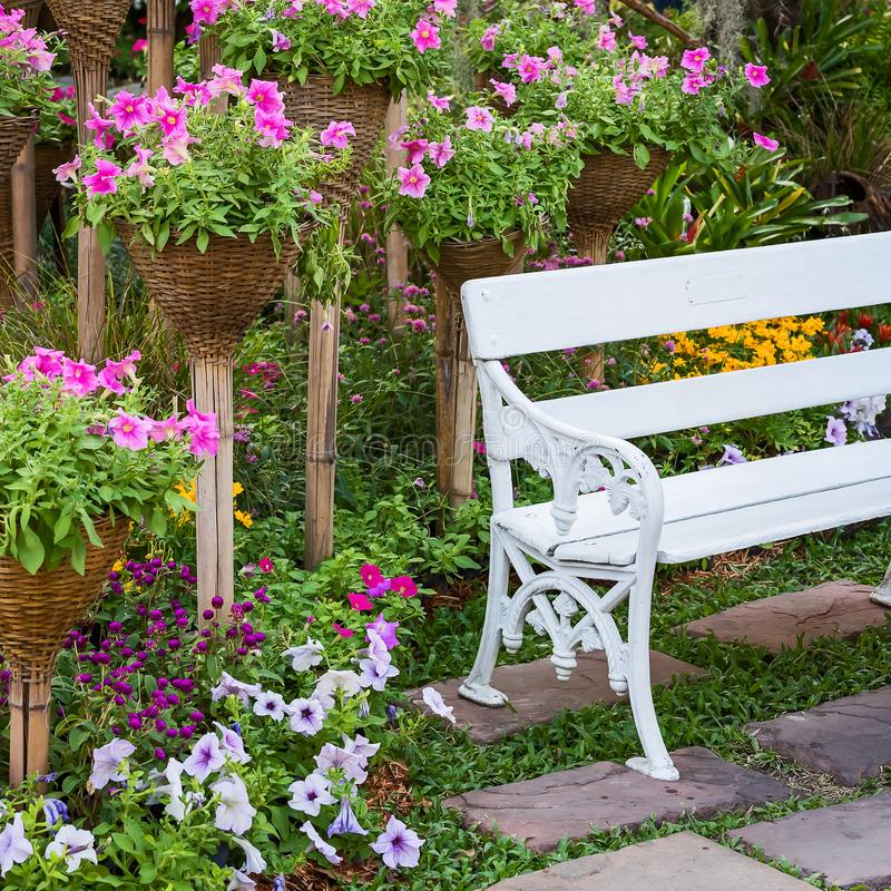 Metal garden chair. stock image. Image of plant, chair - 108394289