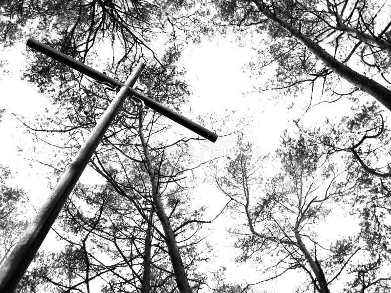Metal cross and trees stock photos