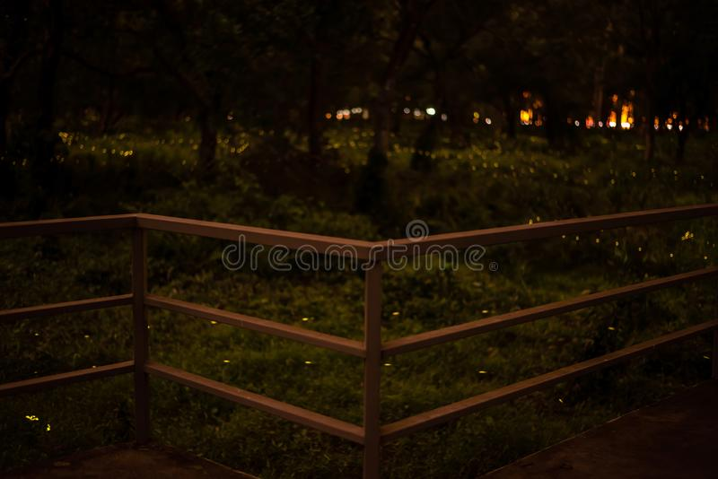 Metal fence and Blur background nature firefly flying in forest at dusk royalty free stock image