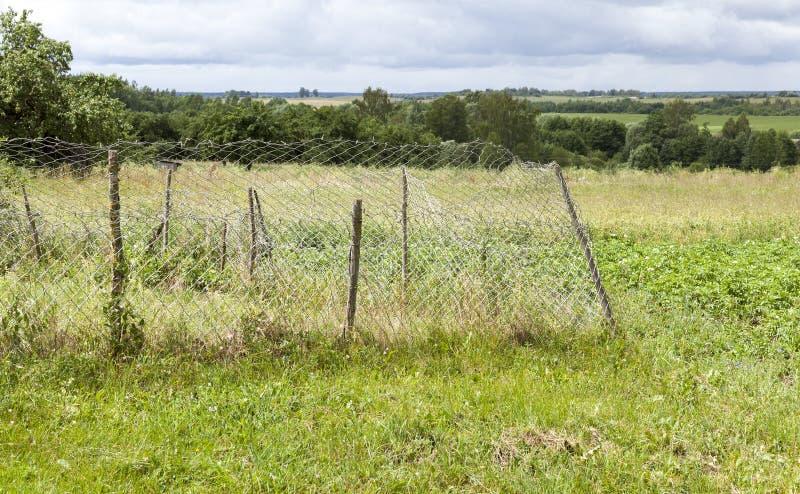 Metal fence. Metal mesh as a fence on the farm, closeup royalty free stock photos