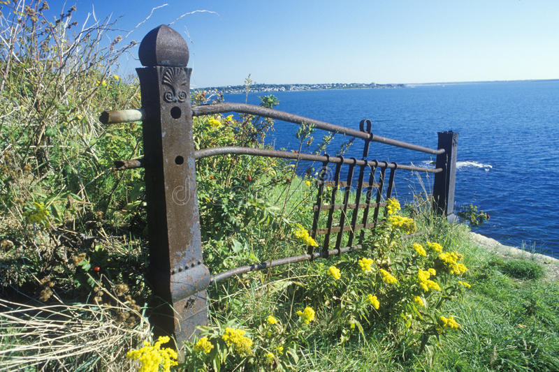 Metal fence with wildflowers, Newport, RI royalty free stock photo