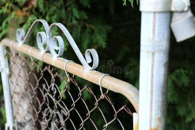 Metal Garden Gate in Summer royalty free stock images