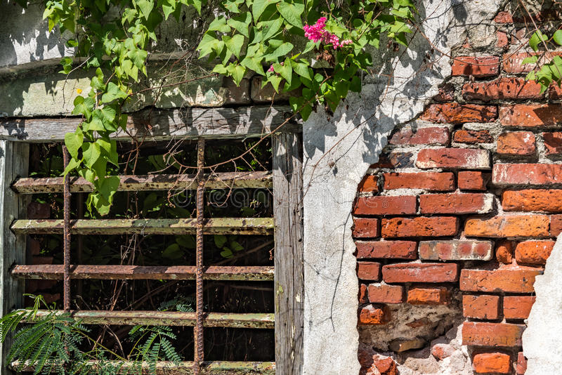 Metal grate window in brick wall with peeling plaster. In Christiansted St. Croix royalty free stock photo