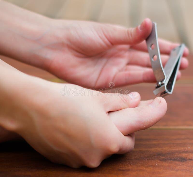 Metal il tagliatore che taglia i chiodi dei piedi, mani che aiutano in un fondo di legno immagine stock
