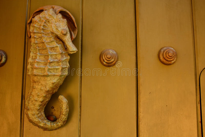Metal knocker shaped sea horse. Hippocampus stock images