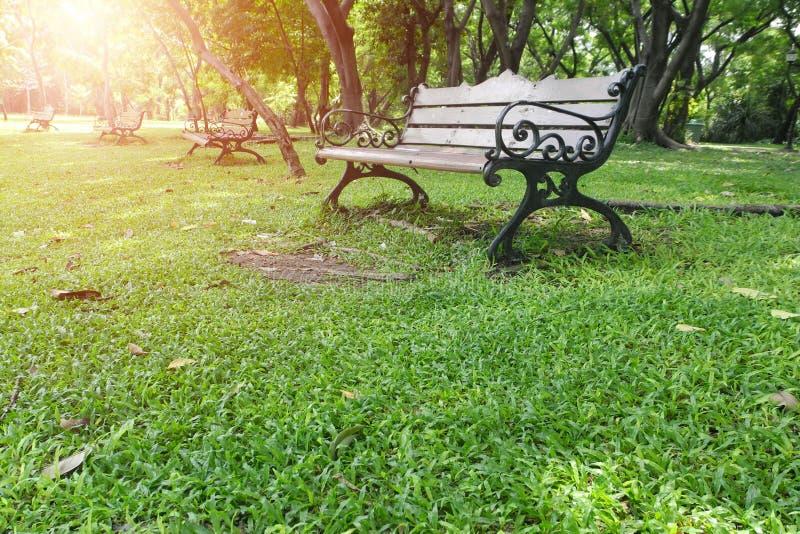 Metal la chaise de jardin sur l'herbe verte avec la lumière d'éclat photos stock